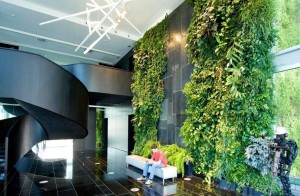 Office-foyer-with-vertical-garden-wall-600x392