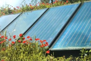 solar-panels-blending-into-the-garden